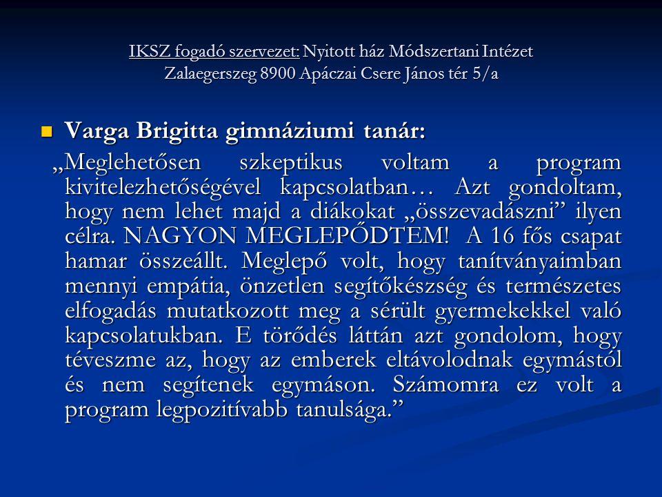 Varga Brigitta gimnáziumi tanár:
