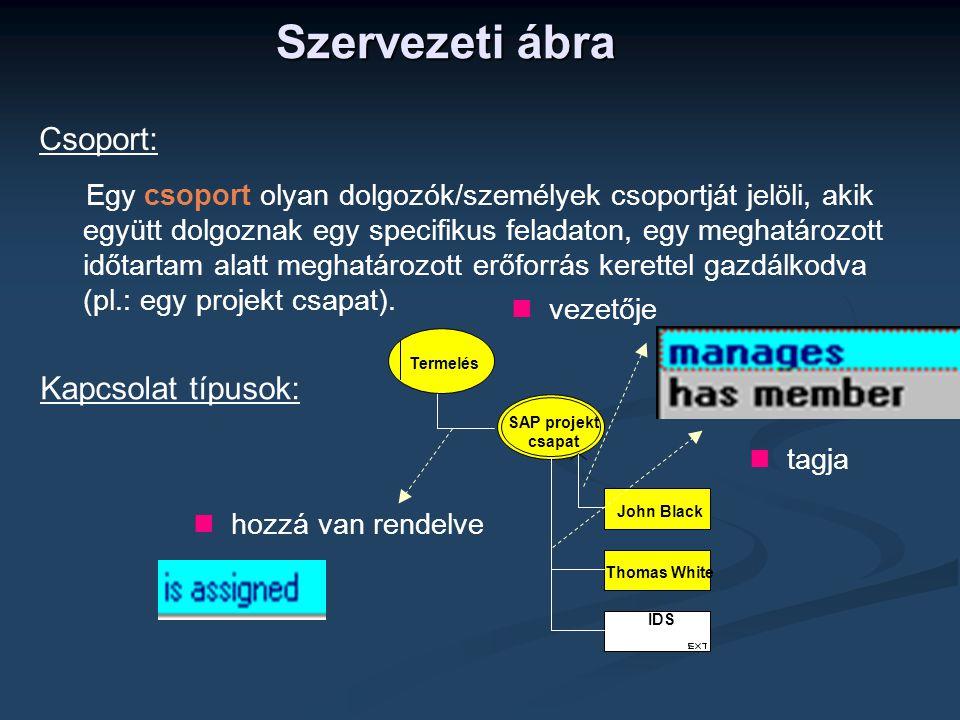 Szervezeti ábra Csoport: Kapcsolat típusok: