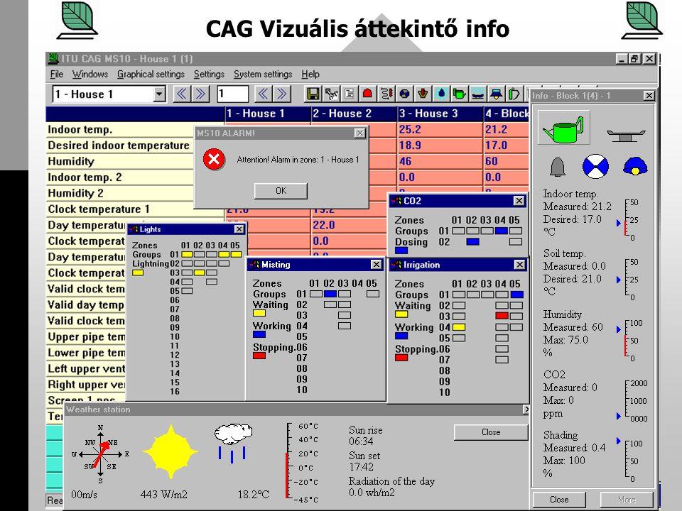CAG Vizuális áttekintő info