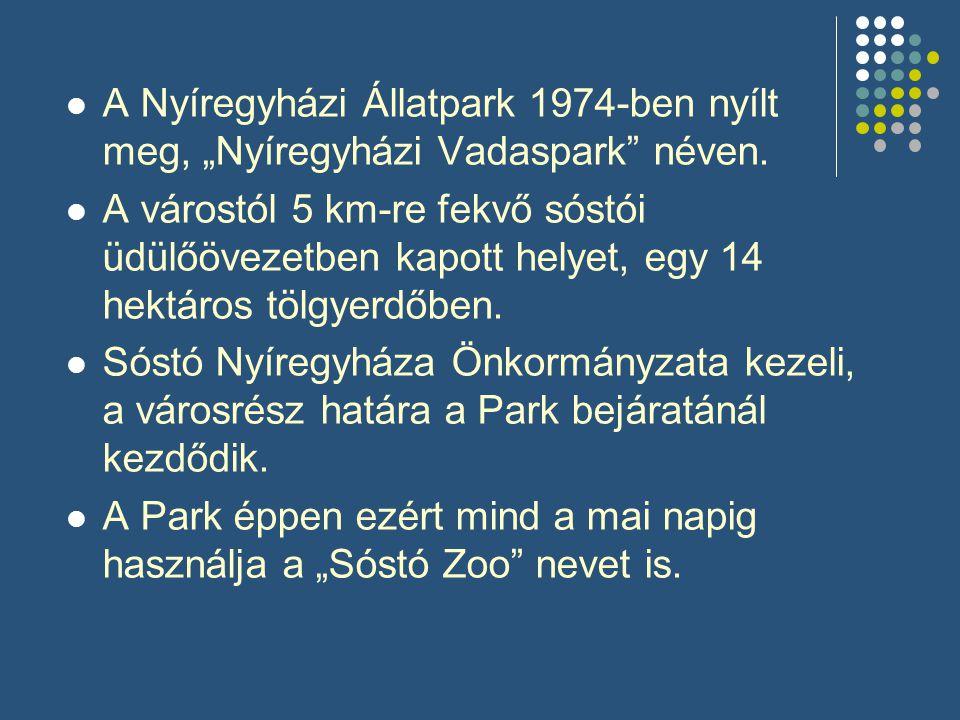 """A Nyíregyházi Állatpark 1974-ben nyílt meg, """"Nyíregyházi Vadaspark néven."""