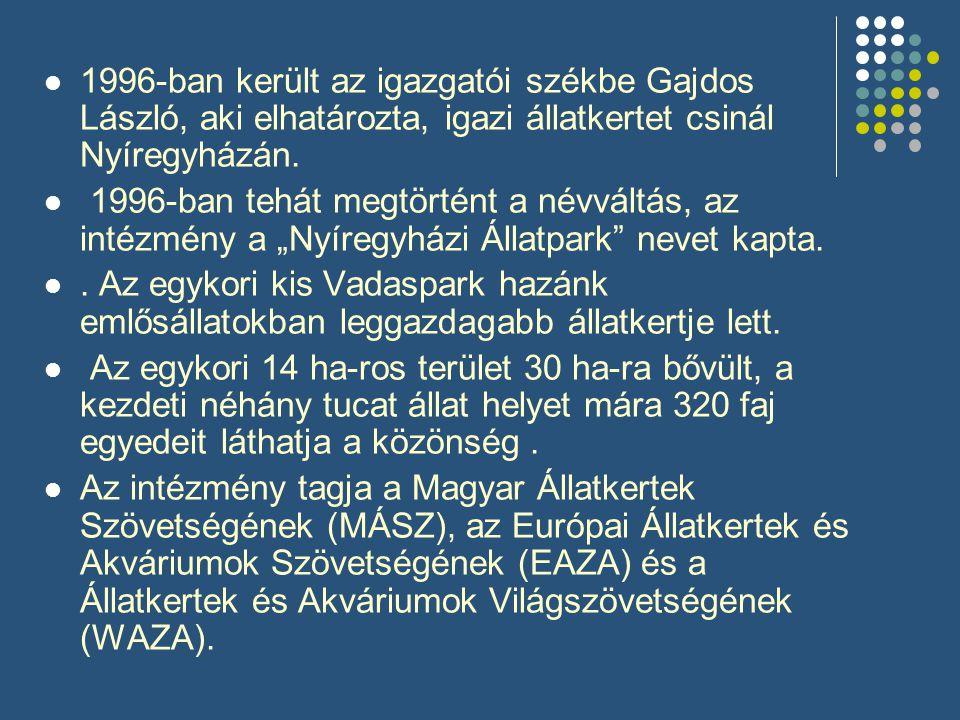 1996-ban került az igazgatói székbe Gajdos László, aki elhatározta, igazi állatkertet csinál Nyíregyházán.