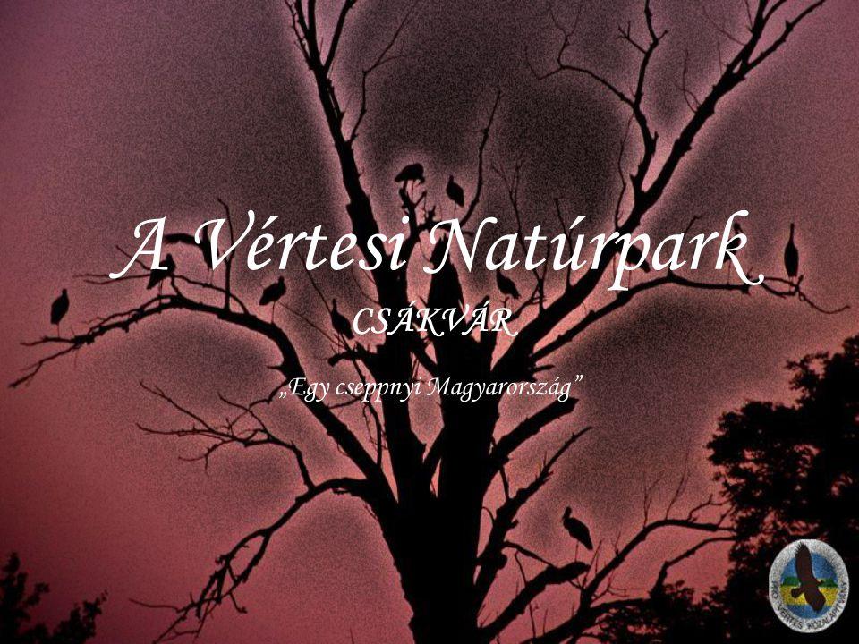 A Vértesi Natúrpark CSÁKVÁR