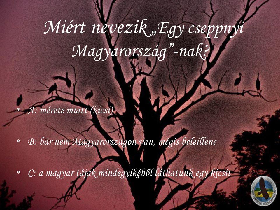 """Miért nevezik """"Egy cseppnyi Magyarország -nak"""