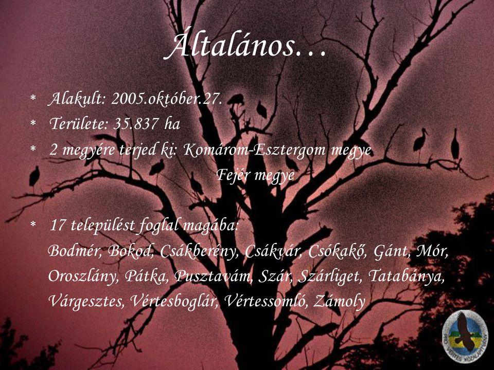 Általános… Alakult: 2005.október.27. Területe: 35.837 ha