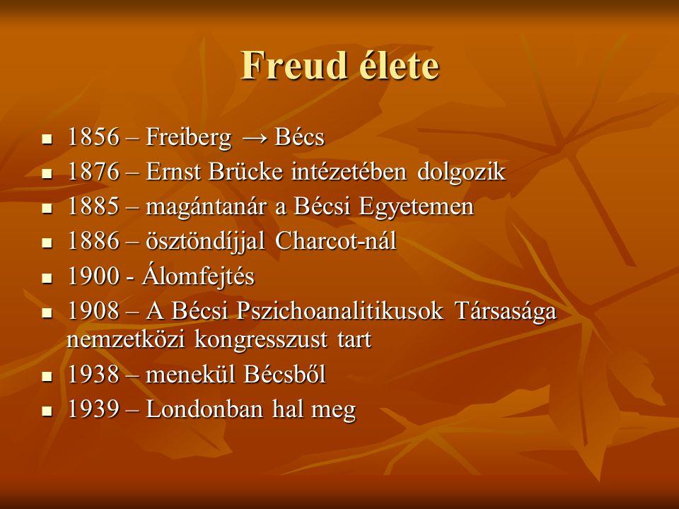 Freud élete 1856 – Freiberg → Bécs