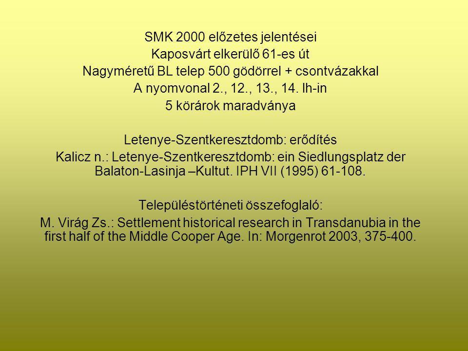 SMK 2000 előzetes jelentései Kaposvárt elkerülő 61-es út