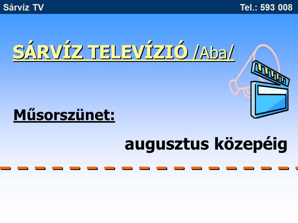 SÁRVÍZ TELEVÍZIÓ /Aba/