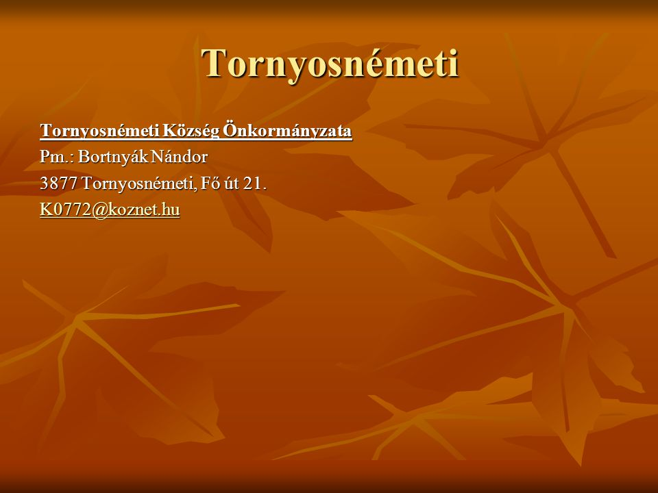 Tornyosnémeti Tornyosnémeti Község Önkormányzata Pm.: Bortnyák Nándor