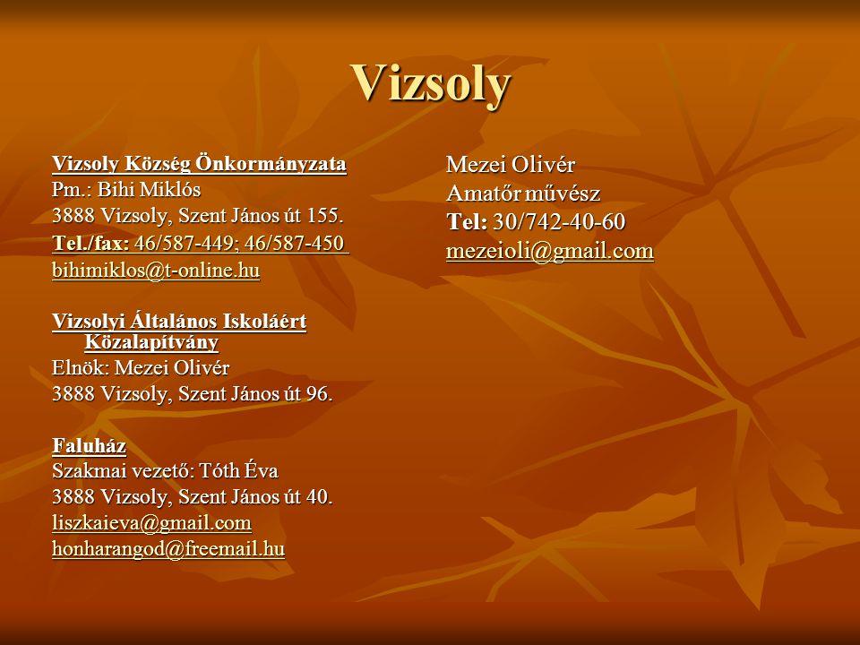Vizsoly Mezei Olivér Amatőr művész Tel: 30/742-40-60