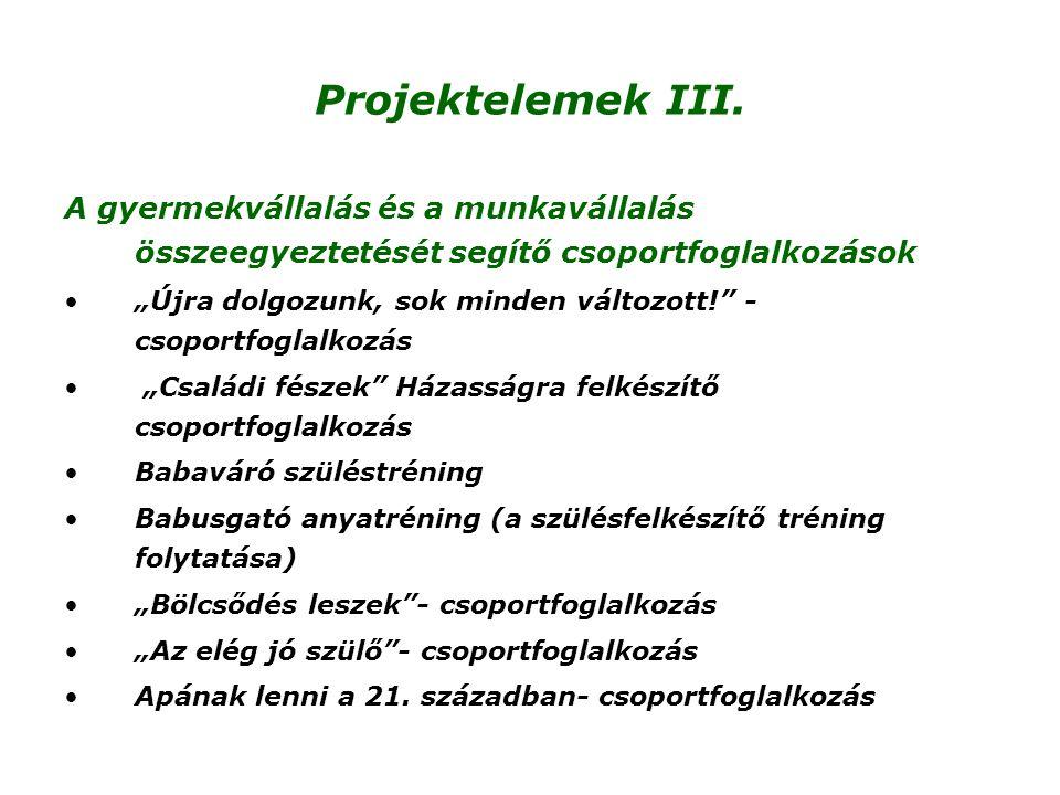 Projektelemek III. A gyermekvállalás és a munkavállalás összeegyeztetését segítő csoportfoglalkozások.