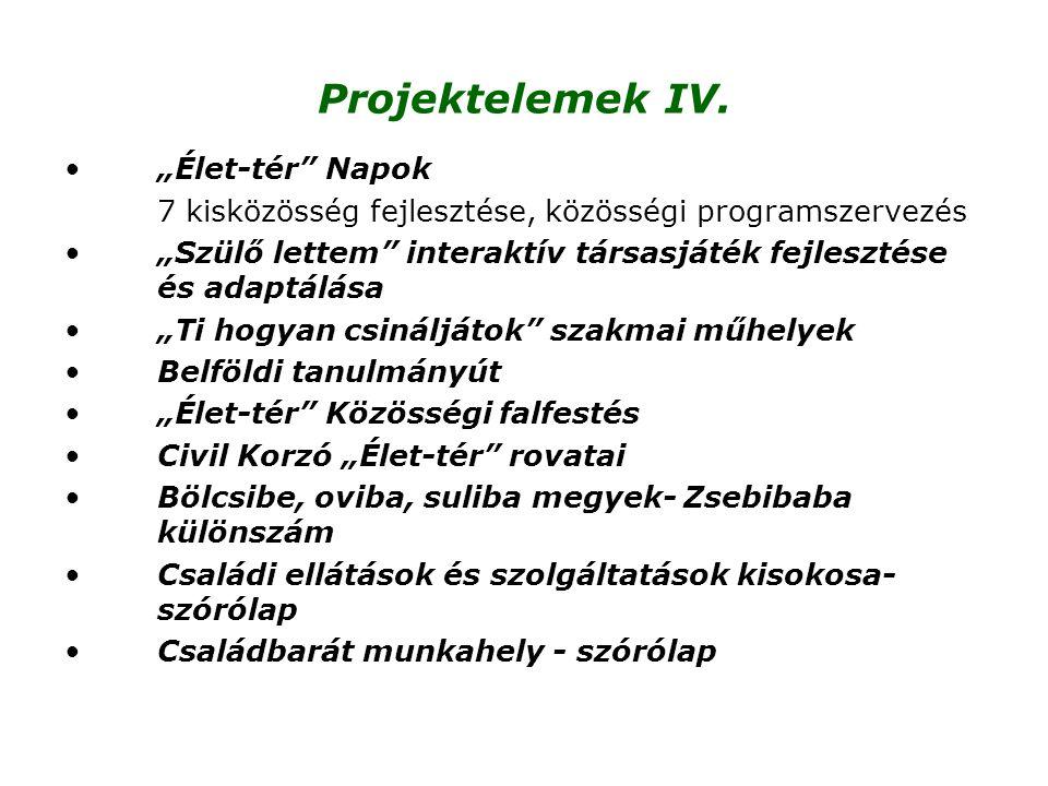 """Projektelemek IV. """"Élet-tér Napok"""