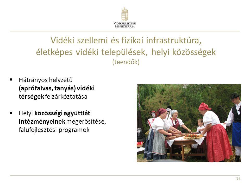 Vidéki szellemi és fizikai infrastruktúra, életképes vidéki települések, helyi közösségek (teendők)