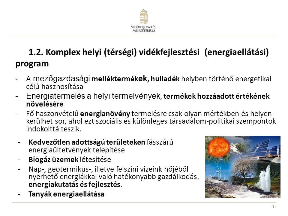 1.2. Komplex helyi (térségi) vidékfejlesztési (energiaellátási) program