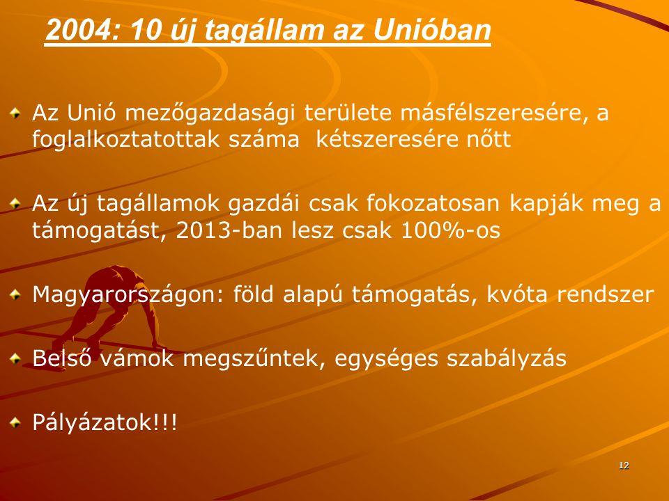 2004: 10 új tagállam az Unióban