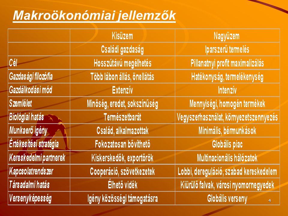 Makroökonómiai jellemzők