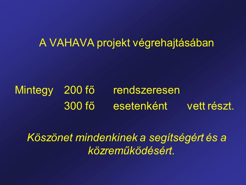 A VAHAVA projekt végrehajtásában