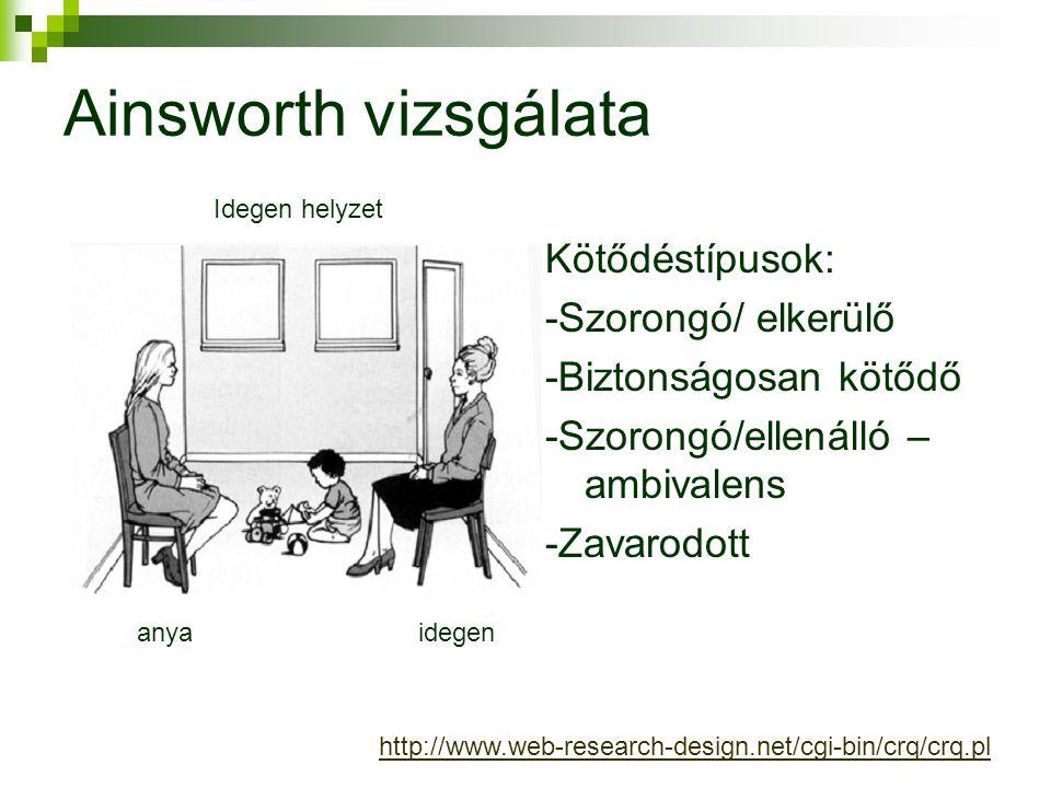 Ainsworth vizsgálata Kötődéstípusok: -Szorongó/ elkerülő