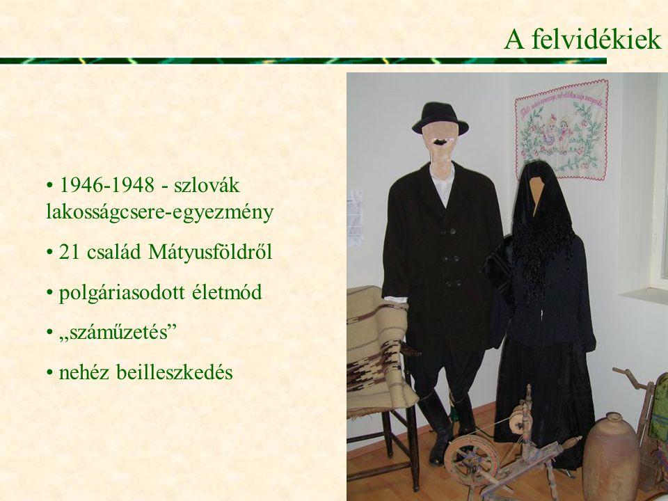 A felvidékiek 1946-1948 - szlovák lakosságcsere-egyezmény