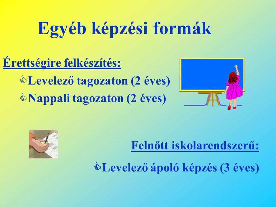 Egyéb képzési formák Érettségire felkészítés: