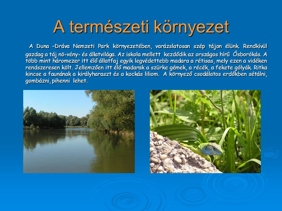 A természeti környezet