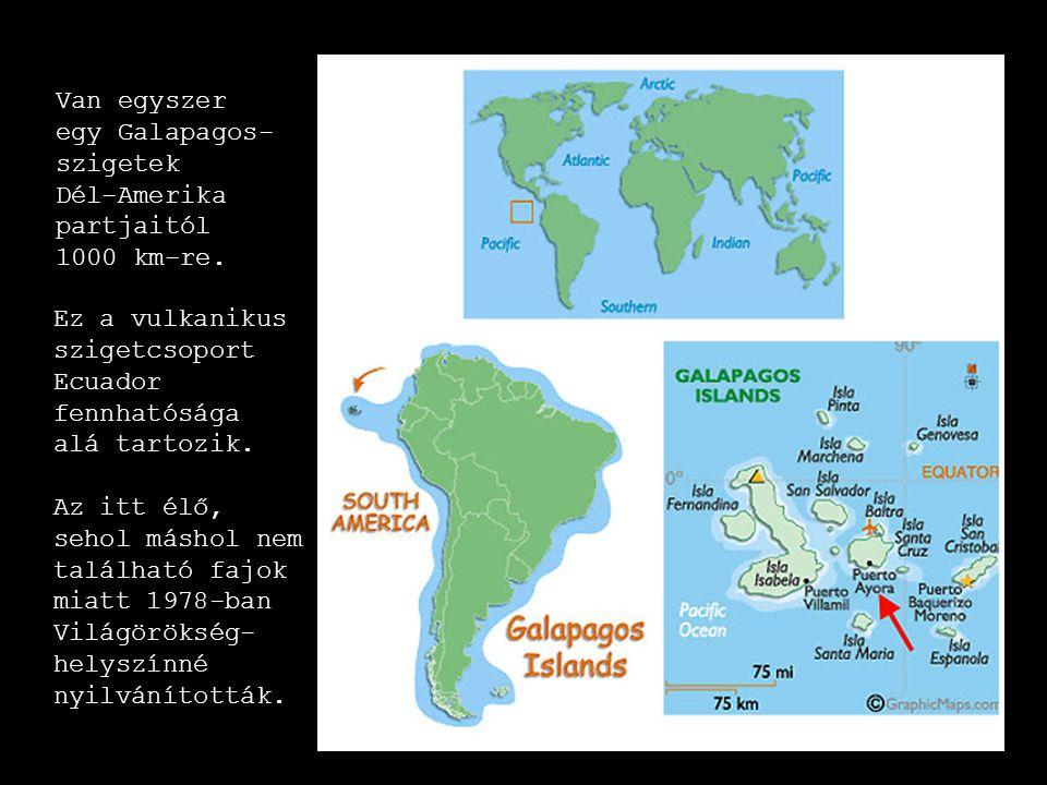 Van egyszer egy Galapagos- szigetek Dél-Amerika. partjaitól. 1000 km-re. Ez a vulkanikus. szigetcsoport Ecuador fennhatósága alá tartozik.