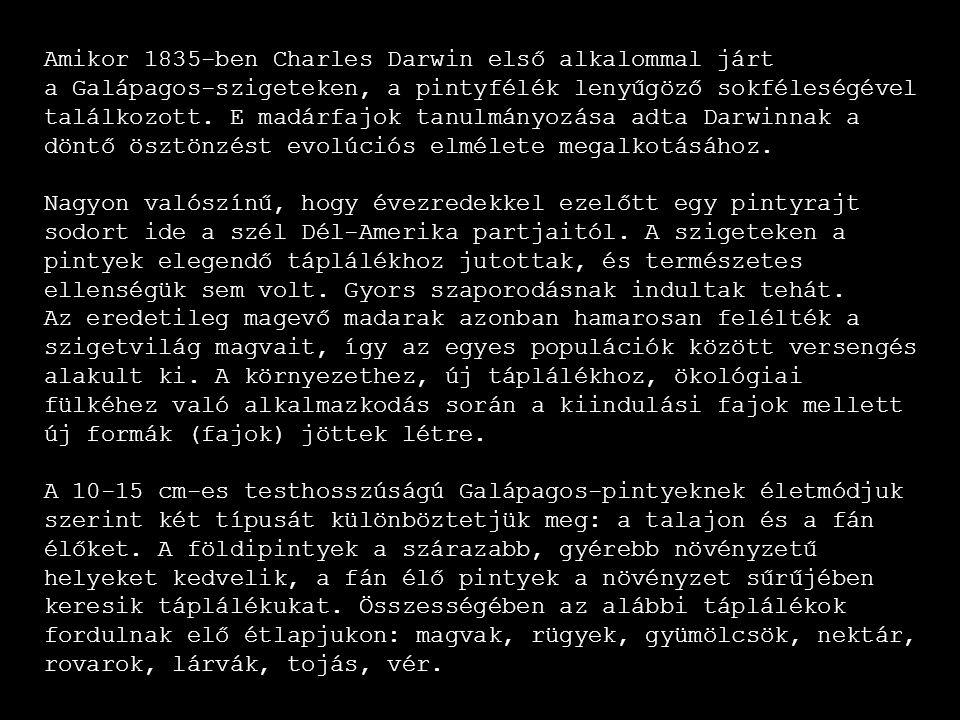 Amikor 1835-ben Charles Darwin első alkalommal járt
