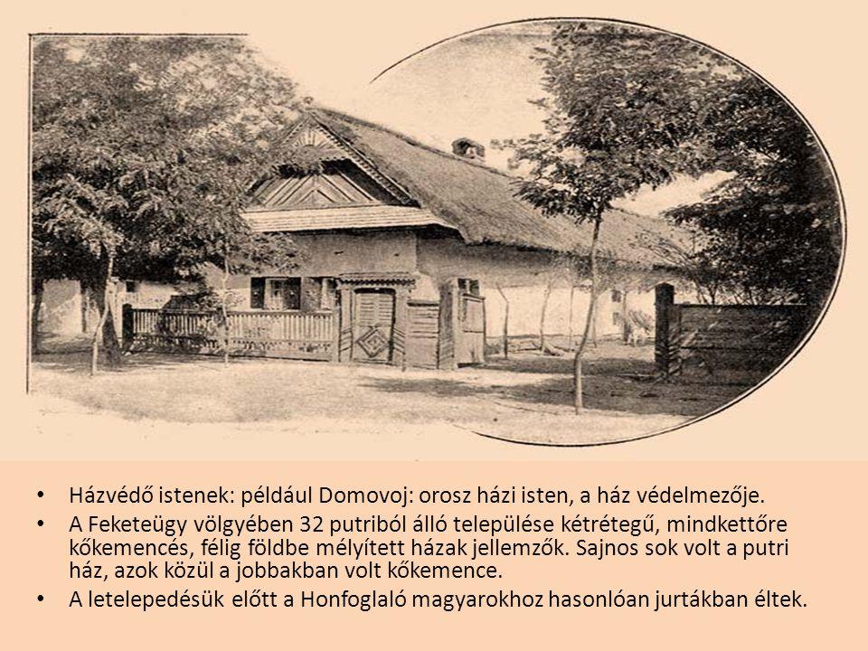 Házvédő istenek: például Domovoj: orosz házi isten, a ház védelmezője.