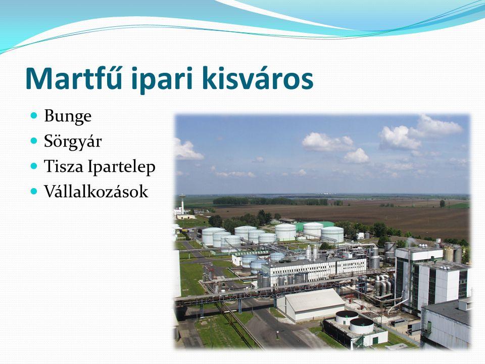 Martfű ipari kisváros Bunge Sörgyár Tisza Ipartelep Vállalkozások