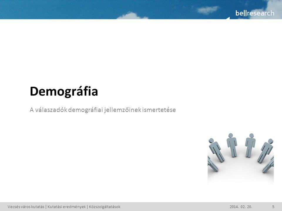 Demográfia A válaszadók demográfiai jellemzőinek ismertetése