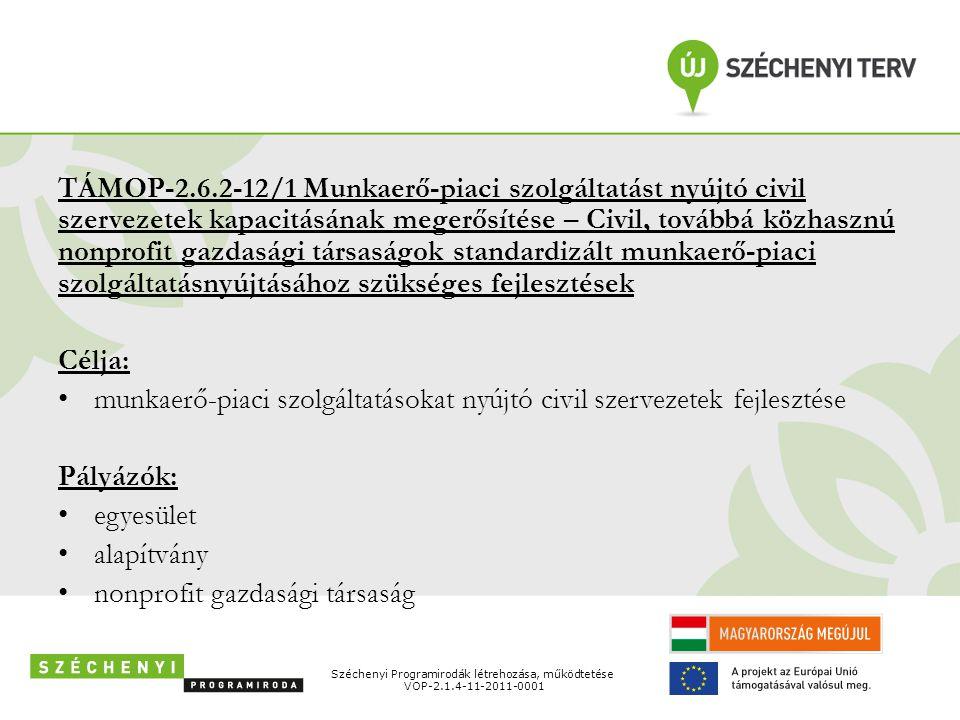 munkaerő-piaci szolgáltatásokat nyújtó civil szervezetek fejlesztése