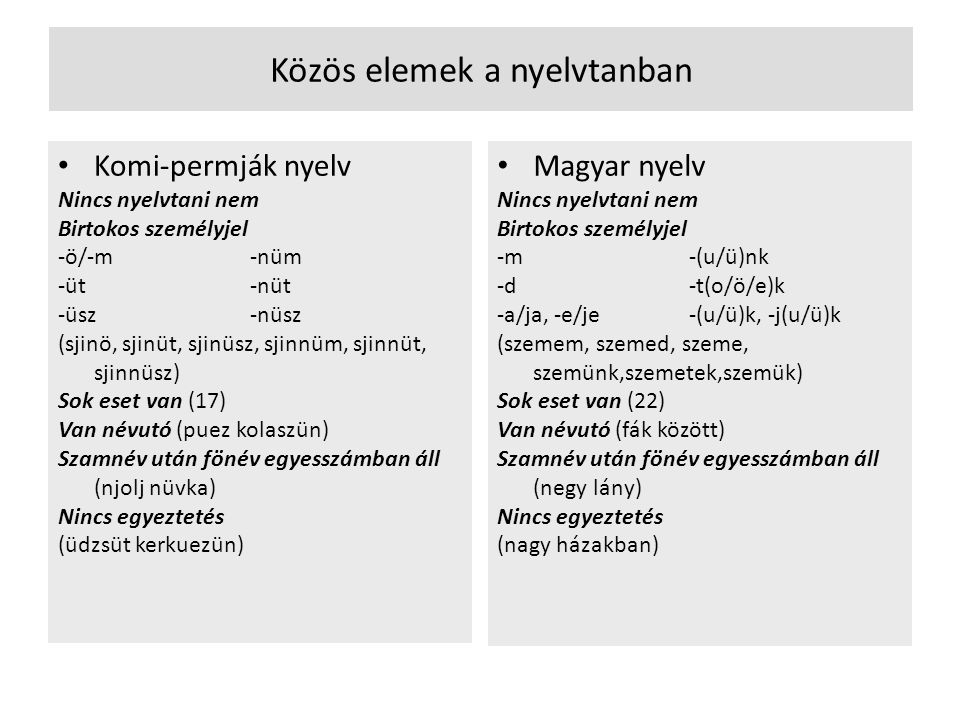 Közös elemek a nyelvtanban