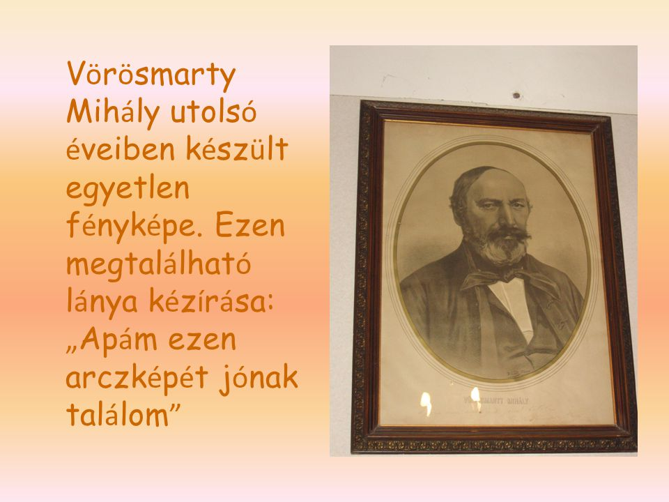 Vörösmarty Mihály utolsó éveiben készült egyetlen fényképe