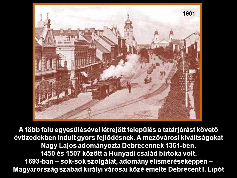1450 és 1507 között a Hunyadi család birtoka volt.