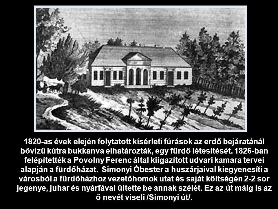 1820-as évek elején folytatott kísérleti fúrások az erdő bejáratánál bővizű kútra bukkanva elhatározták, egy fürdő létesítését.
