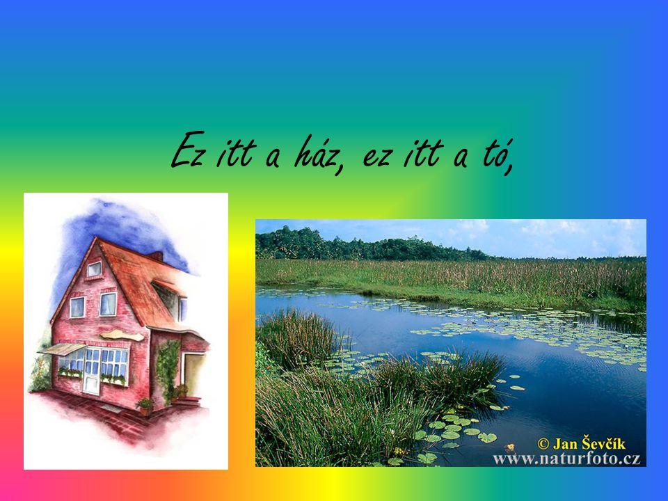 Ez itt a ház, ez itt a tó,