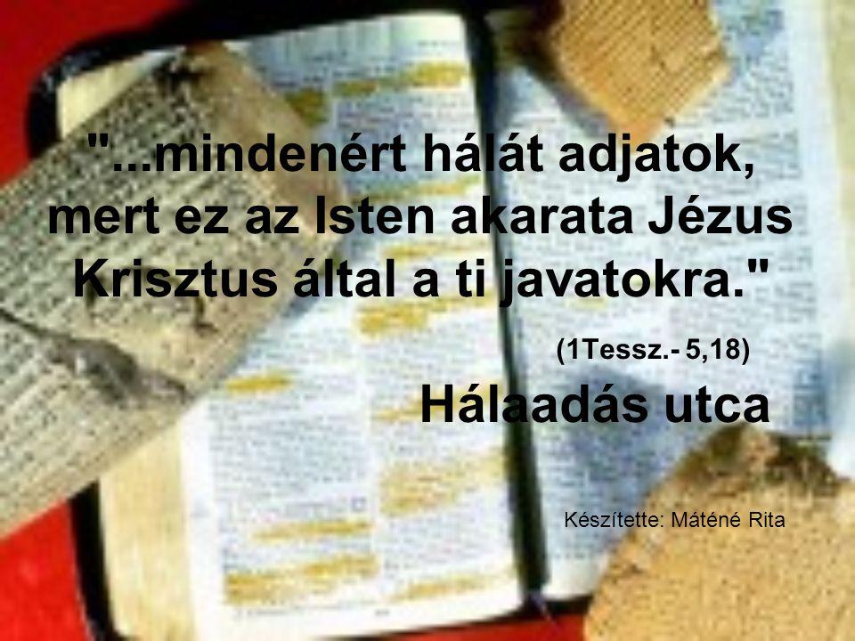 ...mindenért hálát adjatok, mert ez az Isten akarata Jézus Krisztus által a ti javatokra. (1Tessz.- 5,18) Hálaadás utca