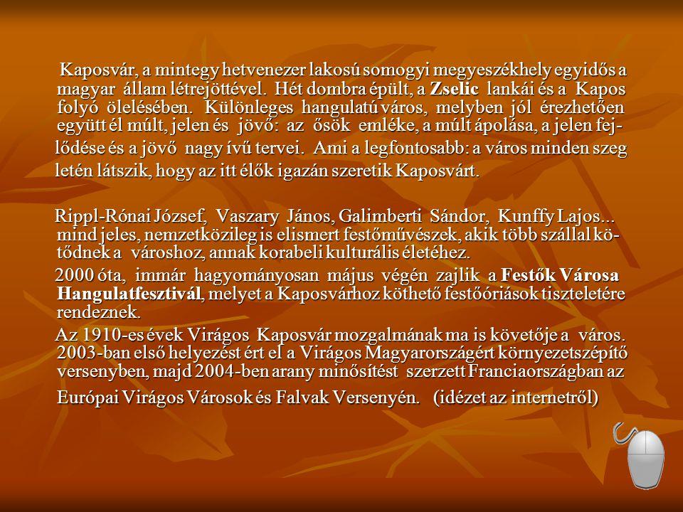 Kaposvár, a mintegy hetvenezer lakosú somogyi megyeszékhely egyidős a magyar állam létrejöttével. Hét dombra épült, a Zselic lankái és a Kapos folyó ölelésében. Különleges hangulatú város, melyben jól érezhetően együtt él múlt, jelen és jövő: az ősök emléke, a múlt ápolása, a jelen fej-