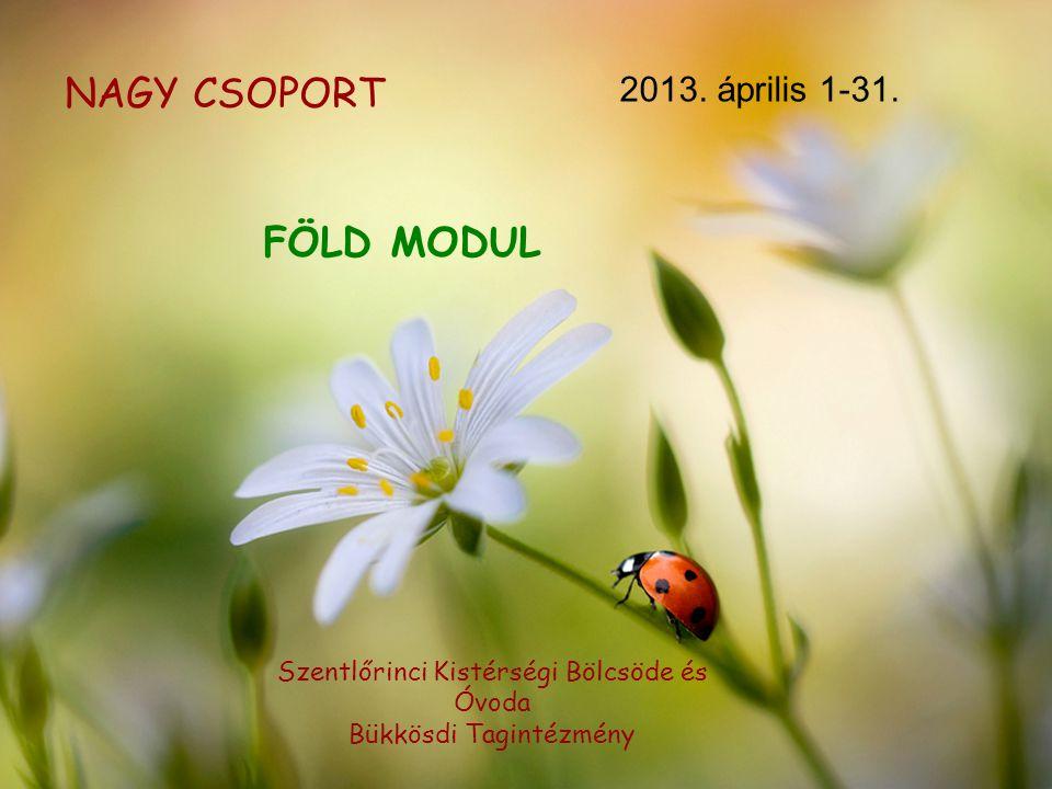 NAGY CSOPORT FÖLD MODUL 2013. április 1-31.