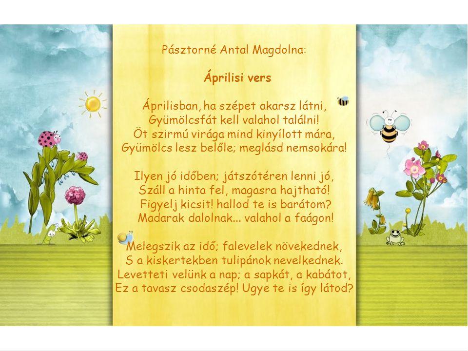 Pásztorné Antal Magdolna: