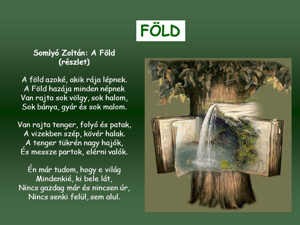 FÖLD Somlyó Zoltán: A Föld (részlet)