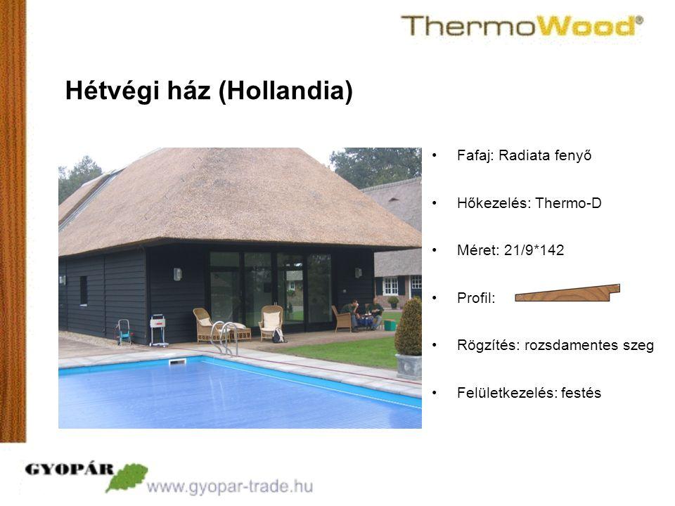 Hétvégi ház (Hollandia)