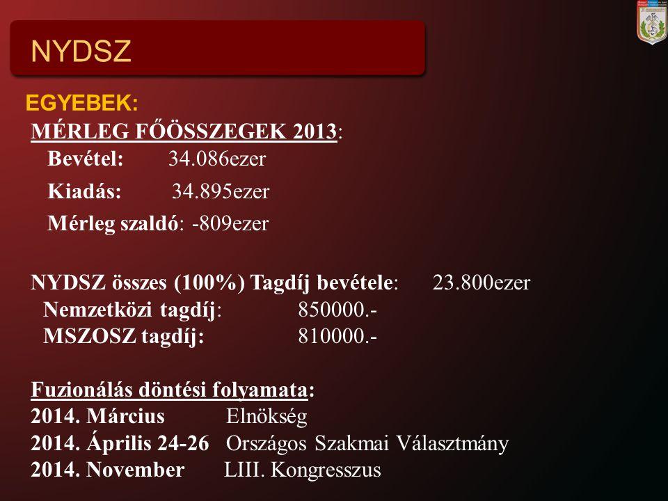 NYDSZ EGYEBEK: MÉRLEG FŐÖSSZEGEK 2013: Bevétel: 34.086ezer
