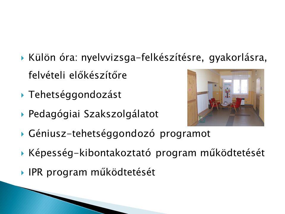Külön óra: nyelvvizsga-felkészítésre, gyakorlásra, felvételi előkészítőre