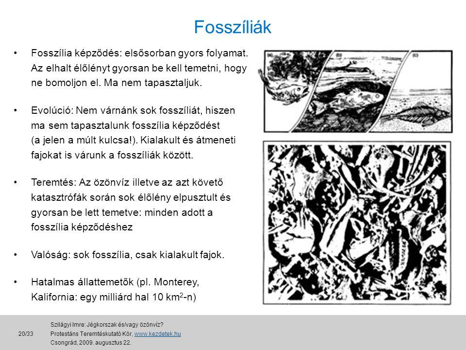 Fosszíliák Fosszília képződés: elsősorban gyors folyamat. Az elhalt élőlényt gyorsan be kell temetni, hogy ne bomoljon el. Ma nem tapasztaljuk.