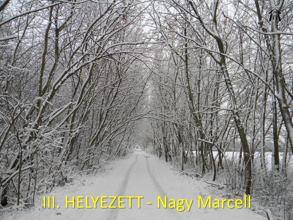 III. HELYEZETT - Nagy Marcell