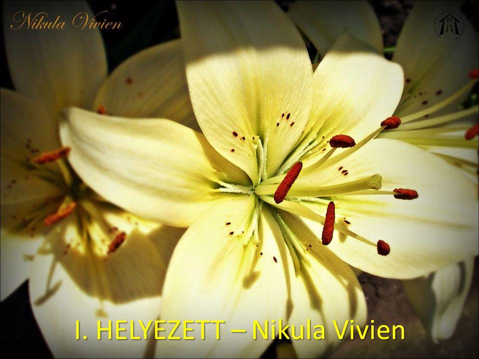 I. HELYEZETT – Nikula Vivien