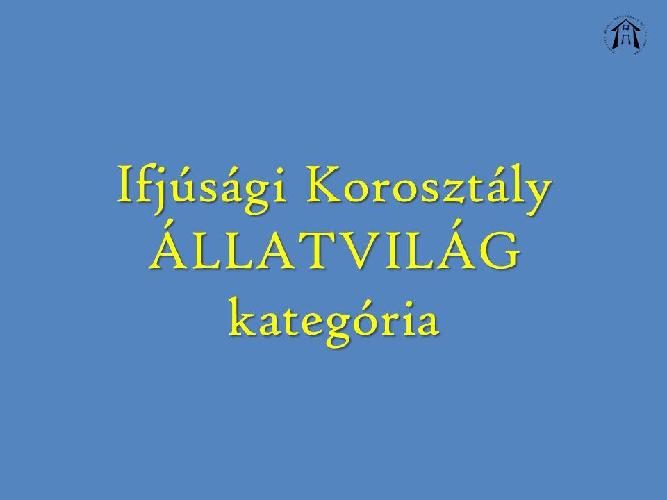 Ifjúsági Korosztály ÁLLATVILÁG kategória