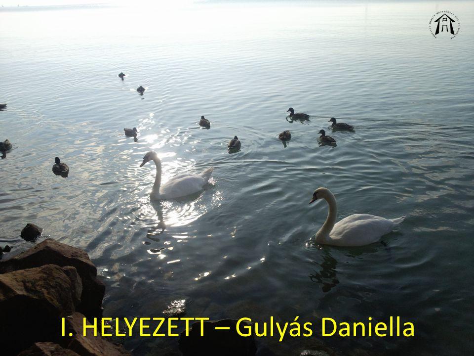 I. HELYEZETT – Gulyás Daniella