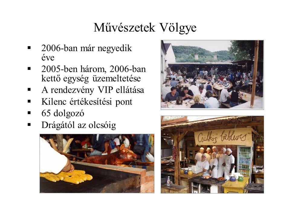 Művészetek Völgye 2006-ban már negyedik éve
