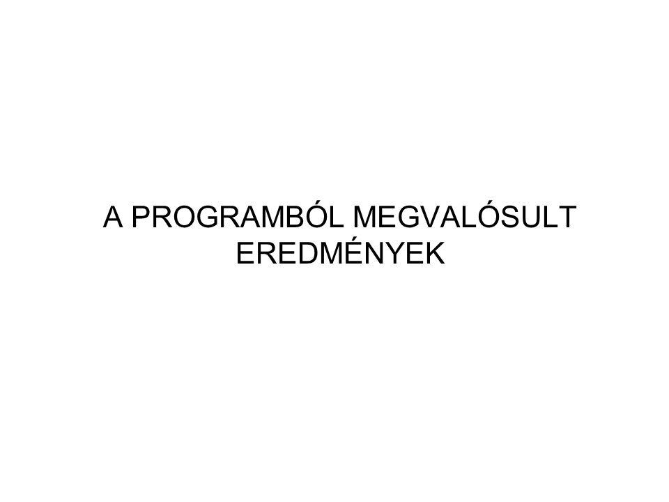 A PROGRAMBÓL MEGVALÓSULT EREDMÉNYEK
